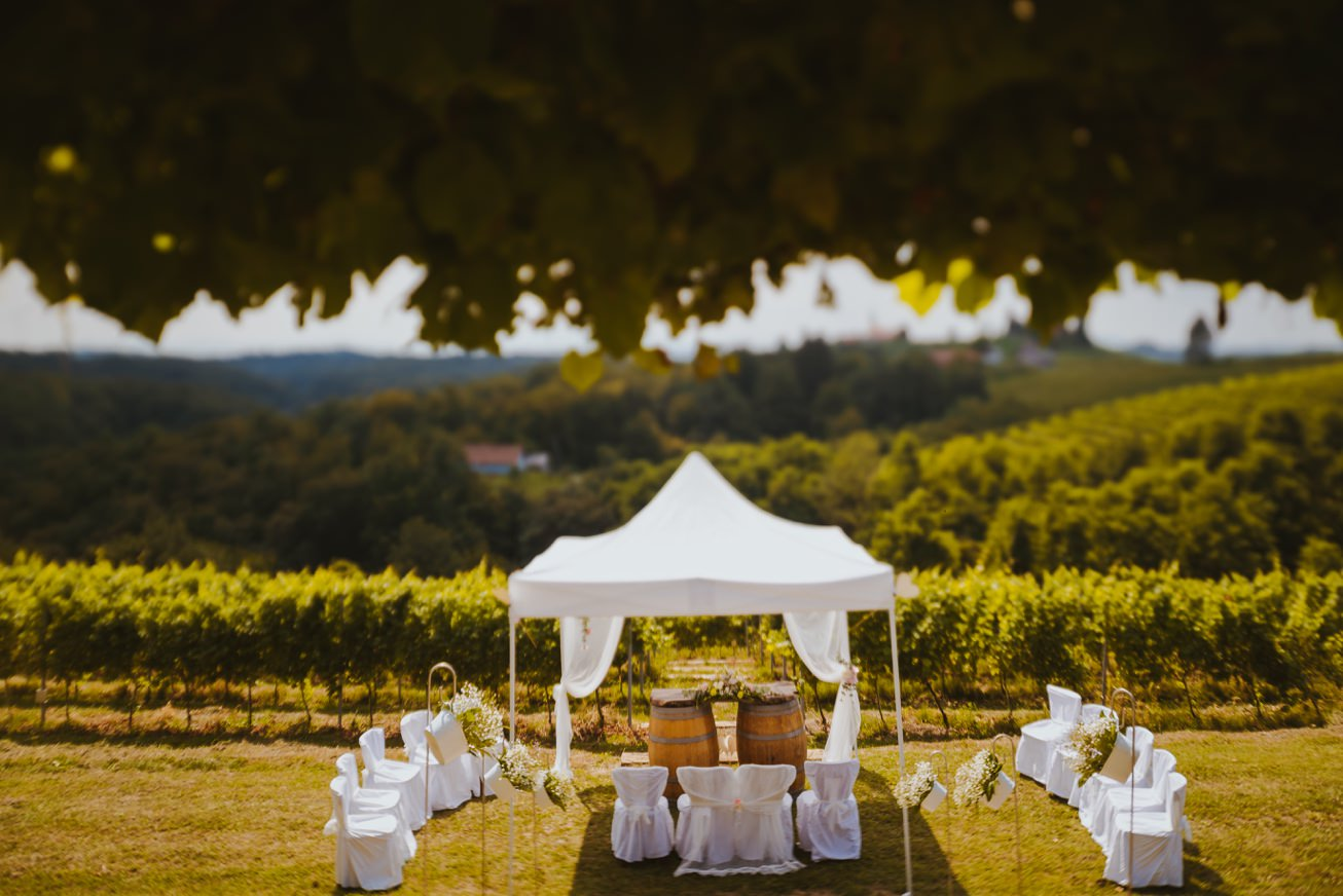 Wedding Photographer Porocni fotograf Ptuj Hotel Primus Peps Wines Zidanica 28