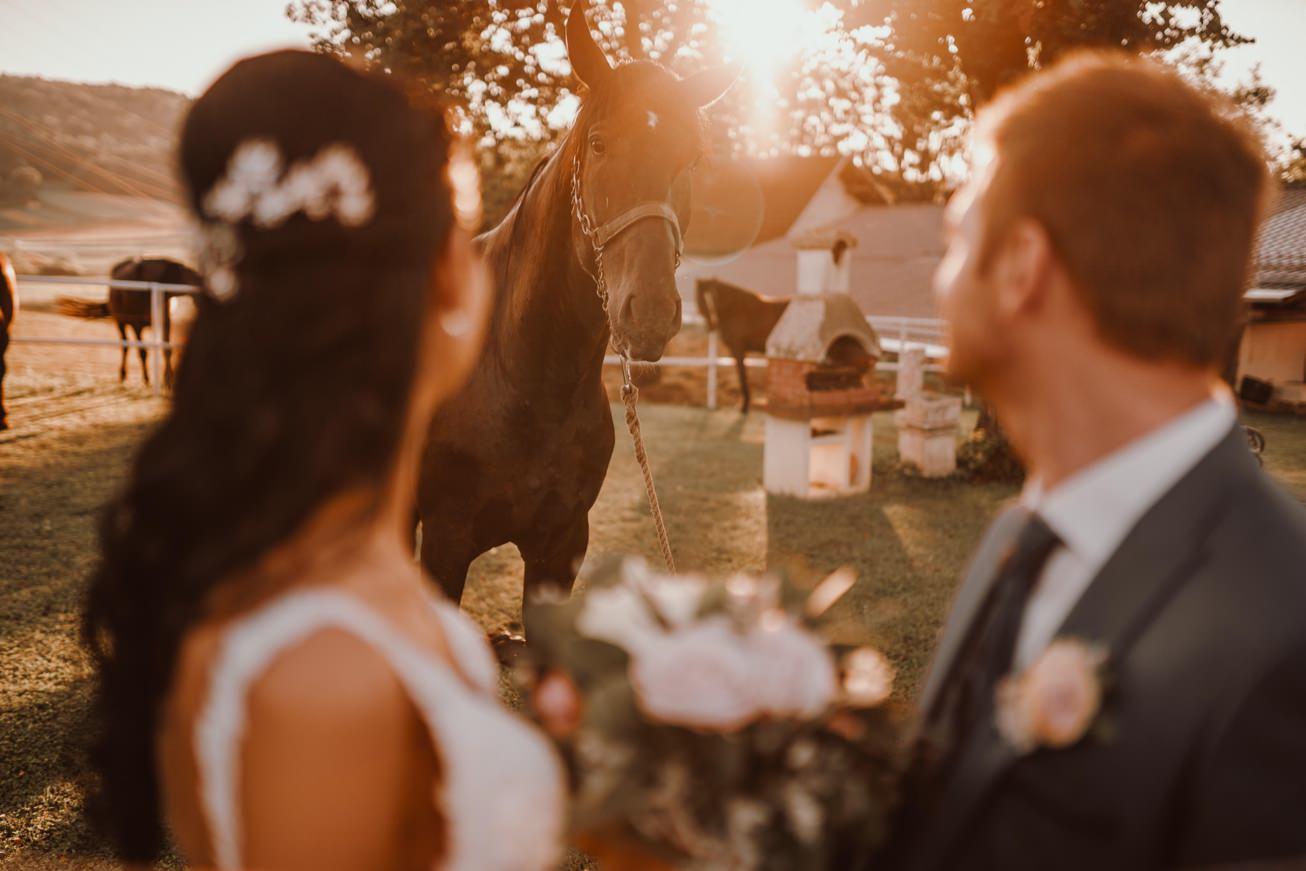 Poroka Zagarjev Mlin Novo mesto Porocni fotograf Wedding photographer 117