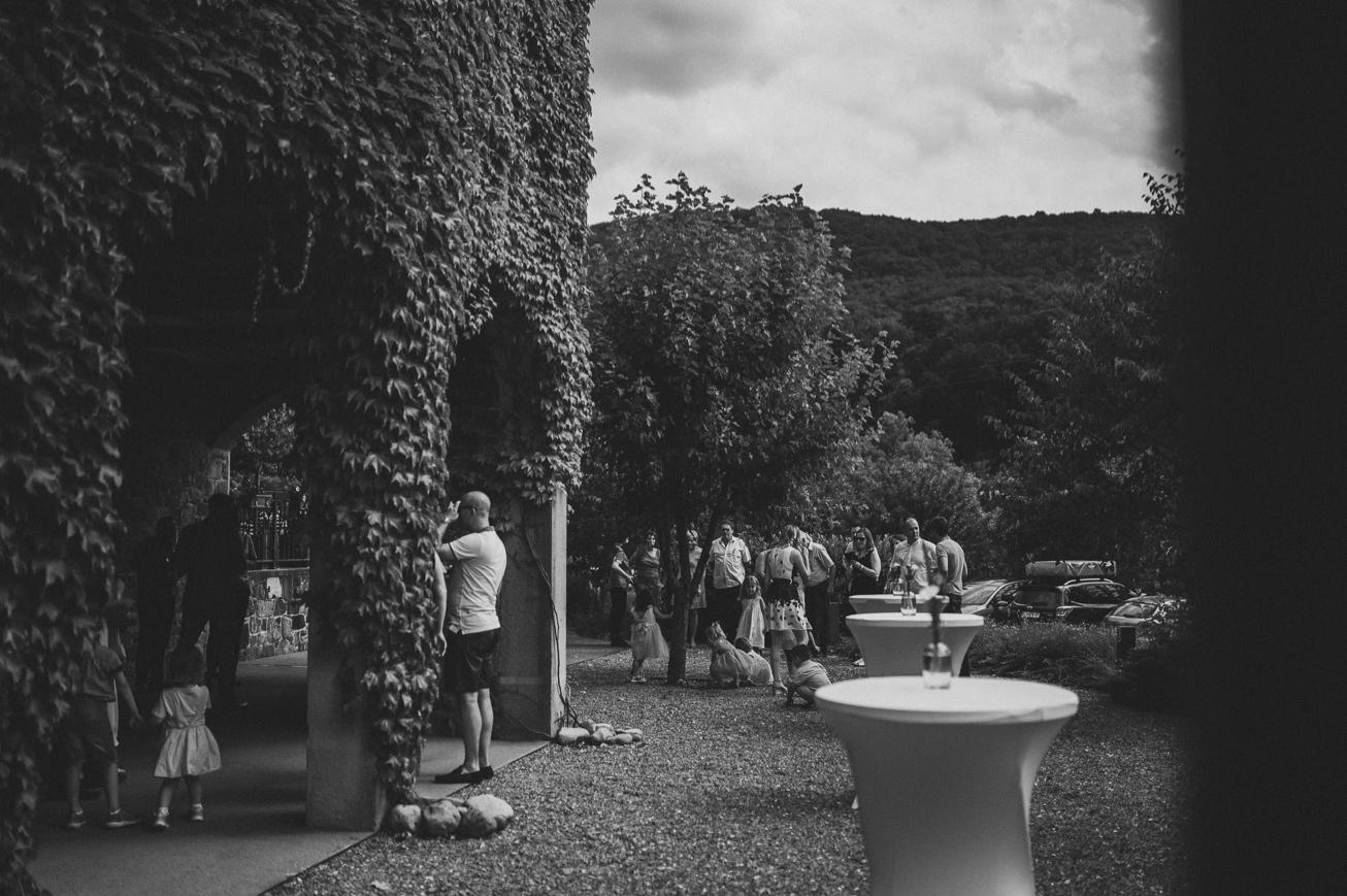Special sort of house Stanjel Kras Slovenia Poroka Hisa Posebne sorte Tomaz Kos Weddings photographer 22